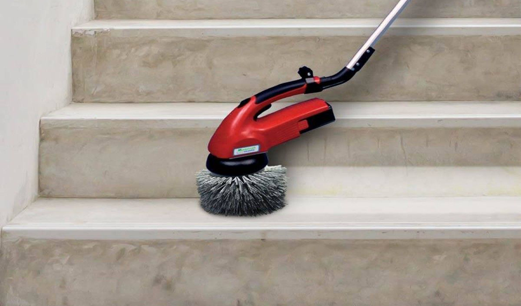 scrubby-on-concrete-stairs_web900_1